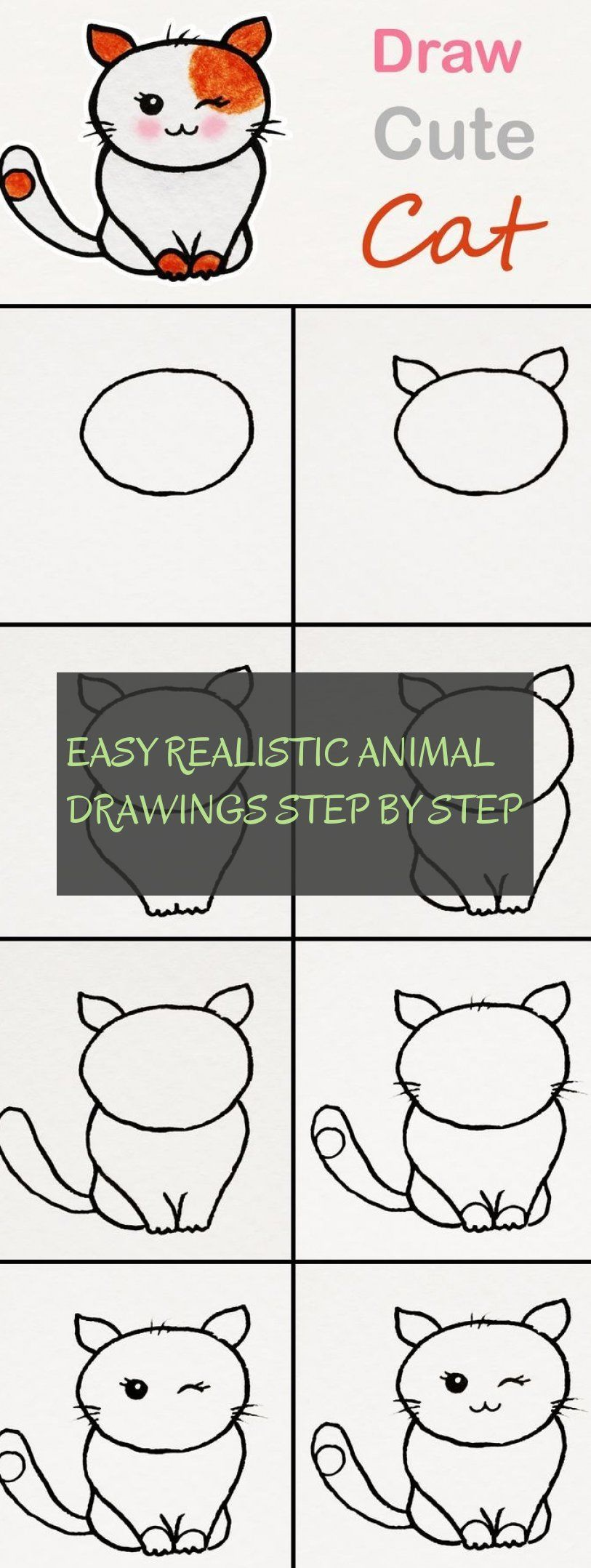 easy realistic animal drawings step by step
