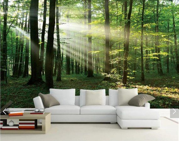 Sun Misty Forest Tree View 3D Wall Murals, Scenery