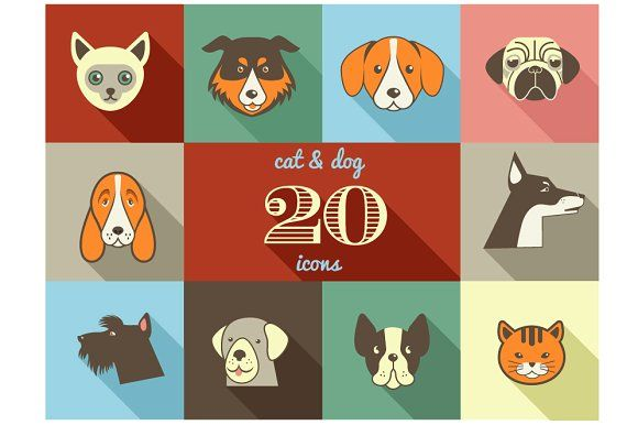 Dogs Cats Flat Vector Icons Set Dog Cat Dog Infographic Cat Icon