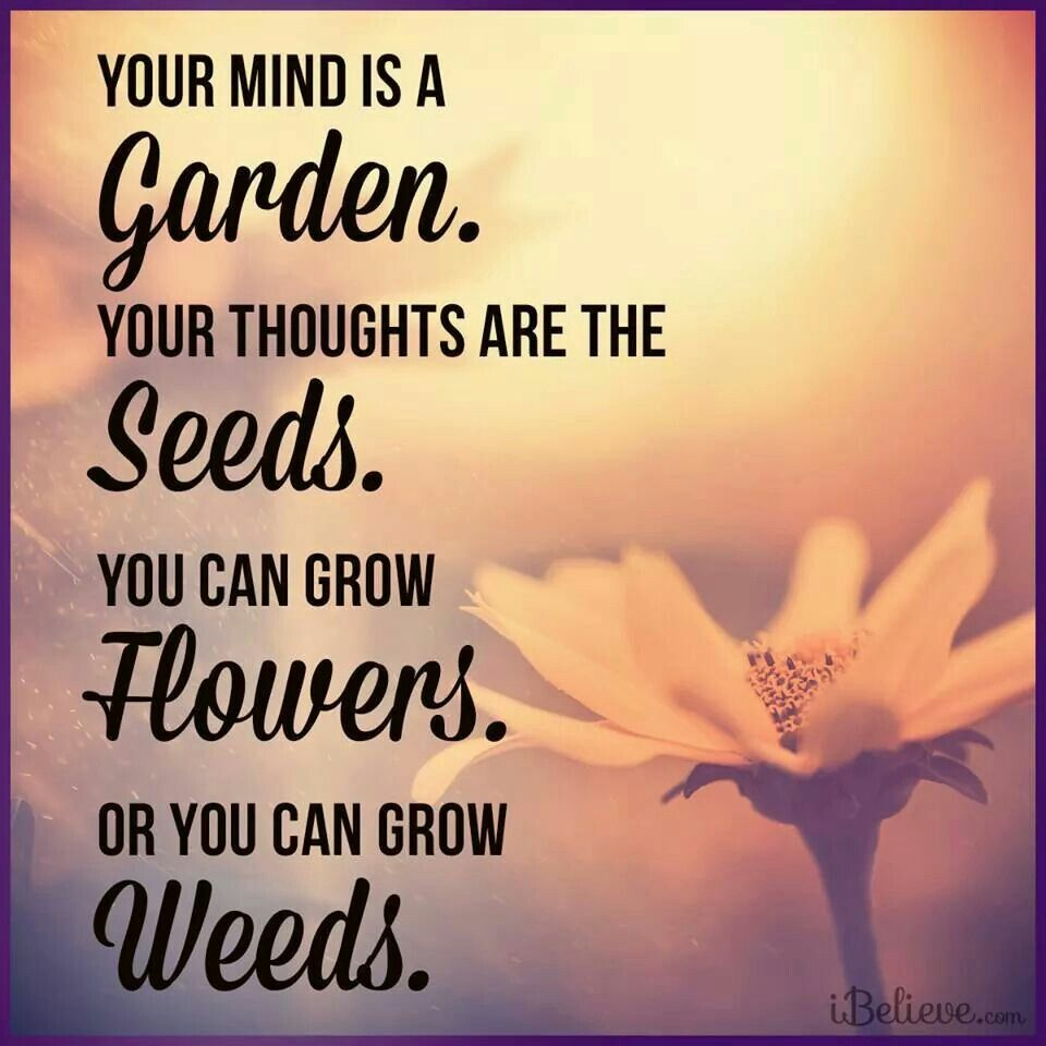 Your mind is a Garden. Your thoughts are the Seeds. You ...