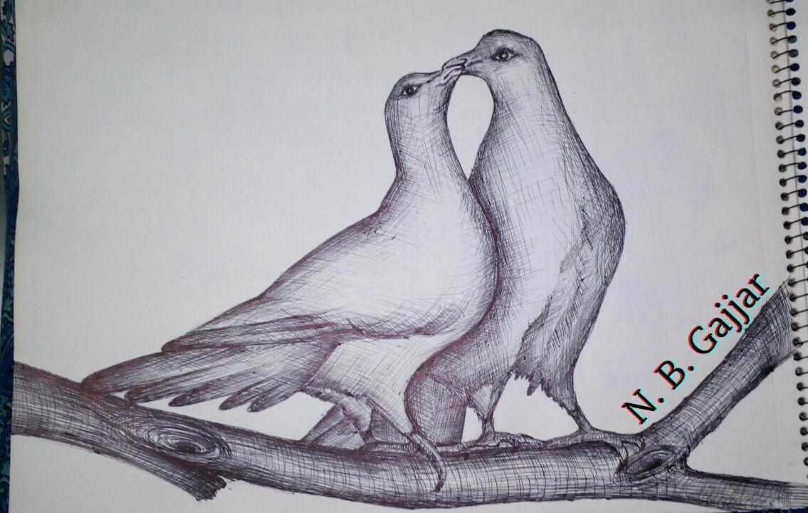 Love Birds Pencil Sketch Pencil Sketch Sketch Book Love Birds
