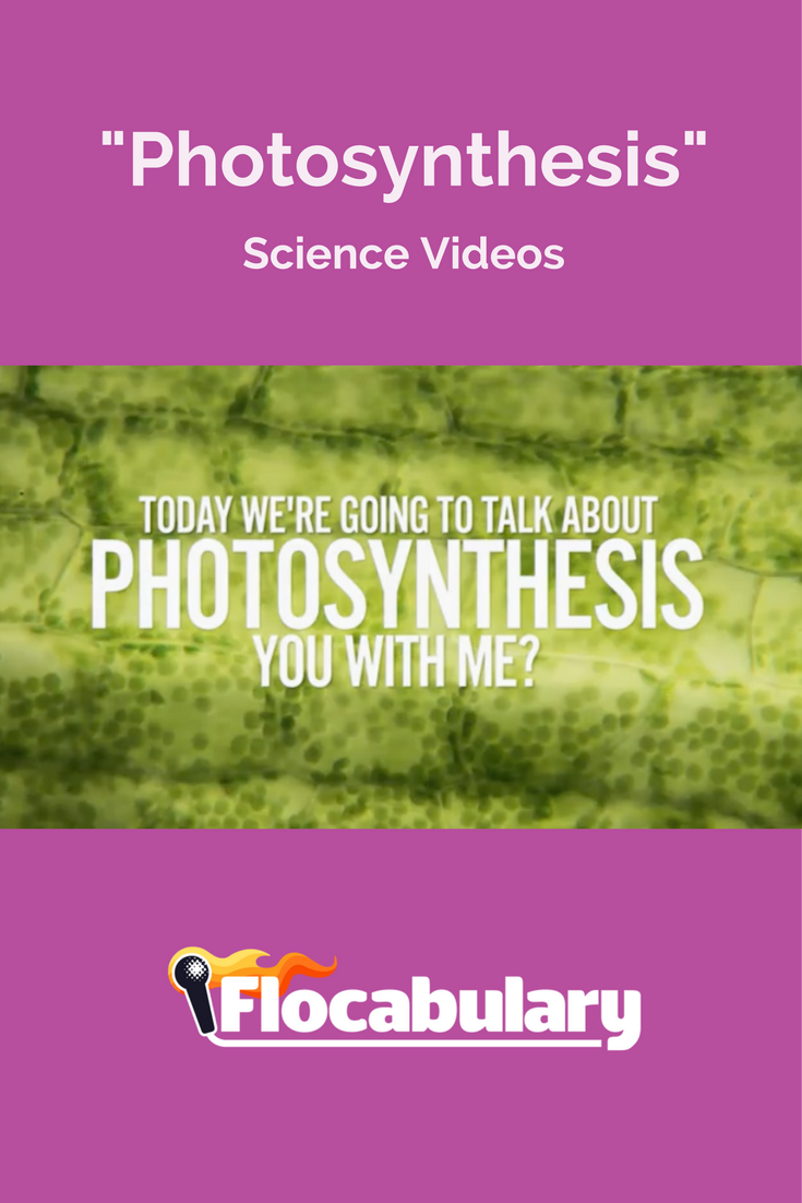 In this unit, you'll explore photosynthesis, the process