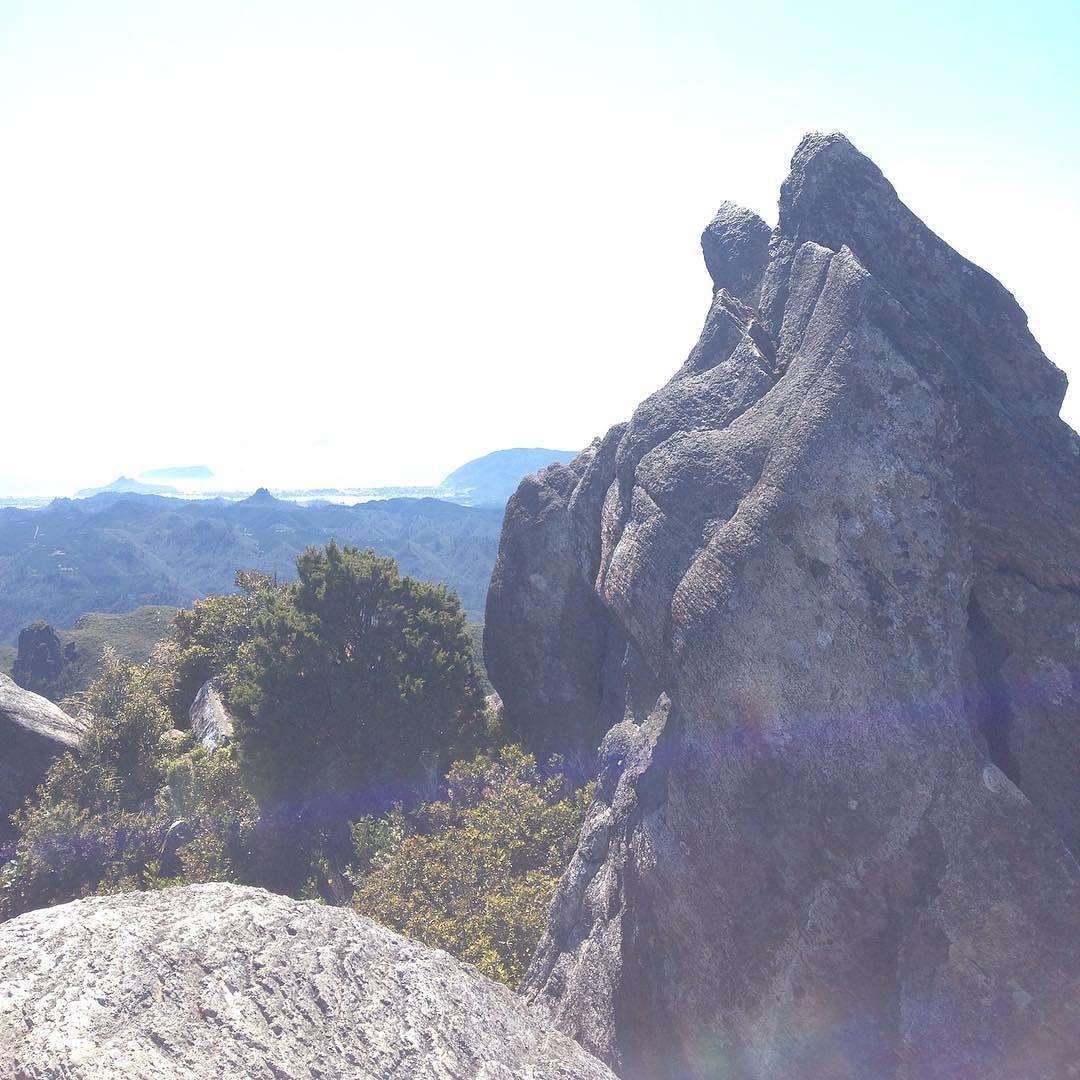 The pinnacles are pretty rad! #coromandel #thepinnacles #nz  by @reneedethierry via http://ift.tt/1RAKbXL