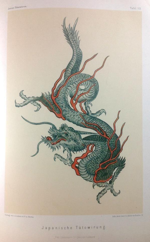 japanese dragon tattoo design from joest 1887 tattooed history pinterest japanese dragon. Black Bedroom Furniture Sets. Home Design Ideas