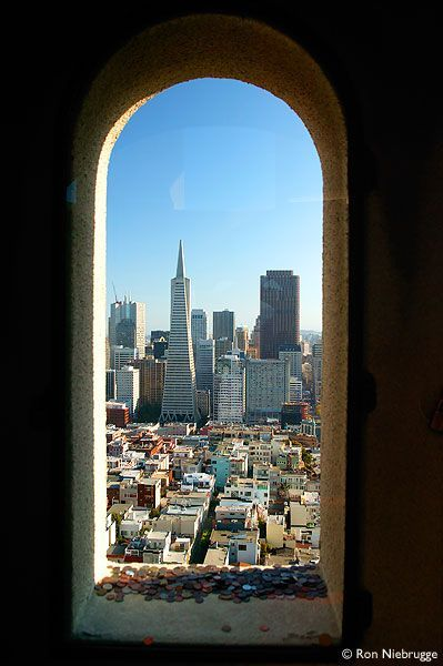 View Of Downtown San Francisco From Coit Tower The Coins On The