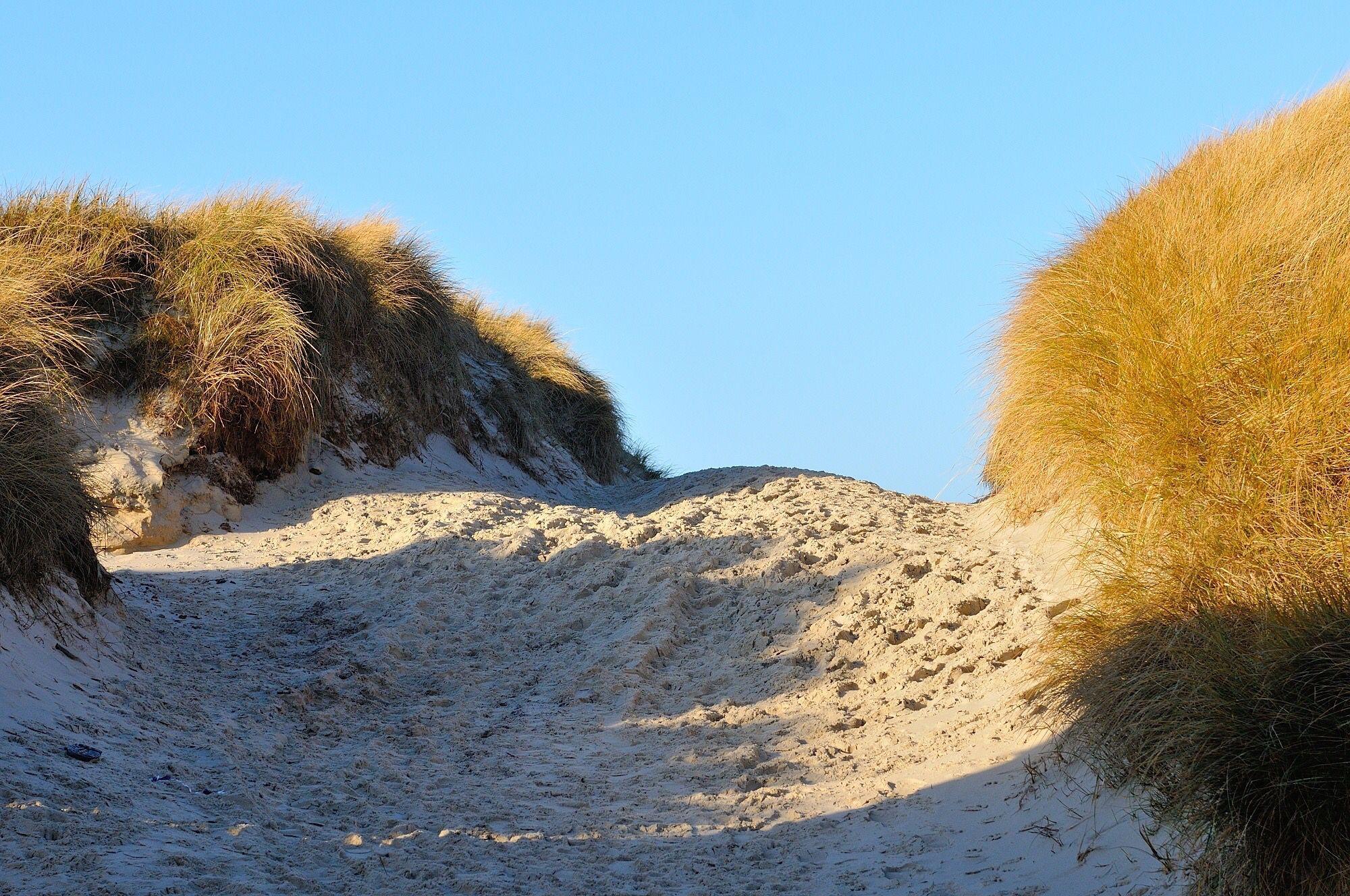 Strand Amrum (Kniepsand)