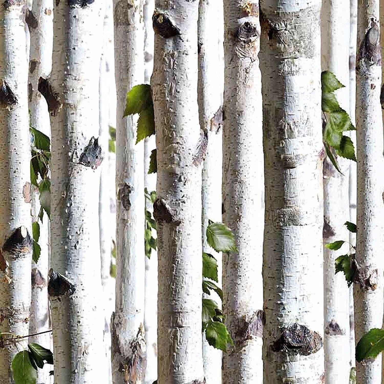 Papier Peint Foret Trompe L Oeil Rouleau 10 M Wall Coverings Wallpaper Decor Wood Effect Wallpaper