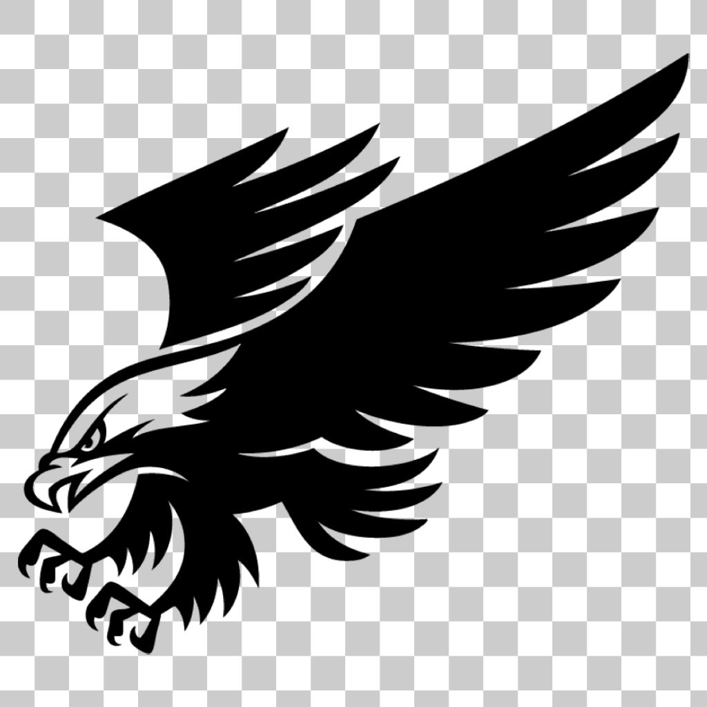 Eagle Hawk Kite Bird Png Image With Transparent Background Eagle Images Bird Illustration Eagle Vector