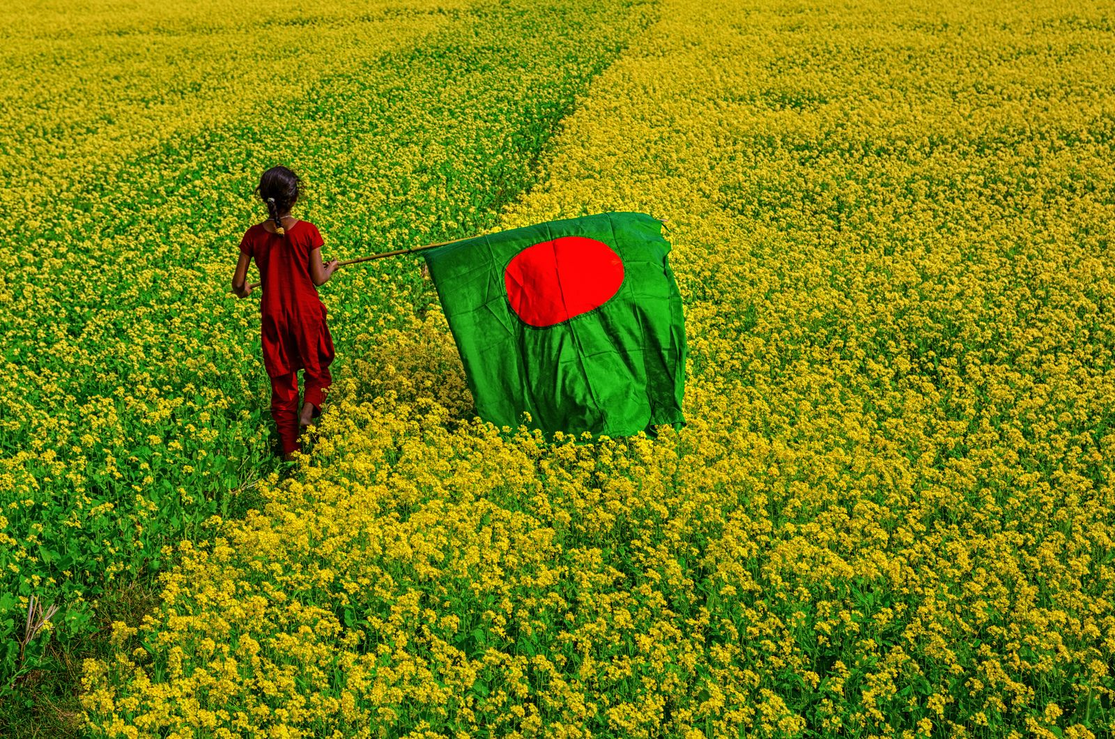 Beautiful Bangladesh Flags Of The World Bangladesh Flag
