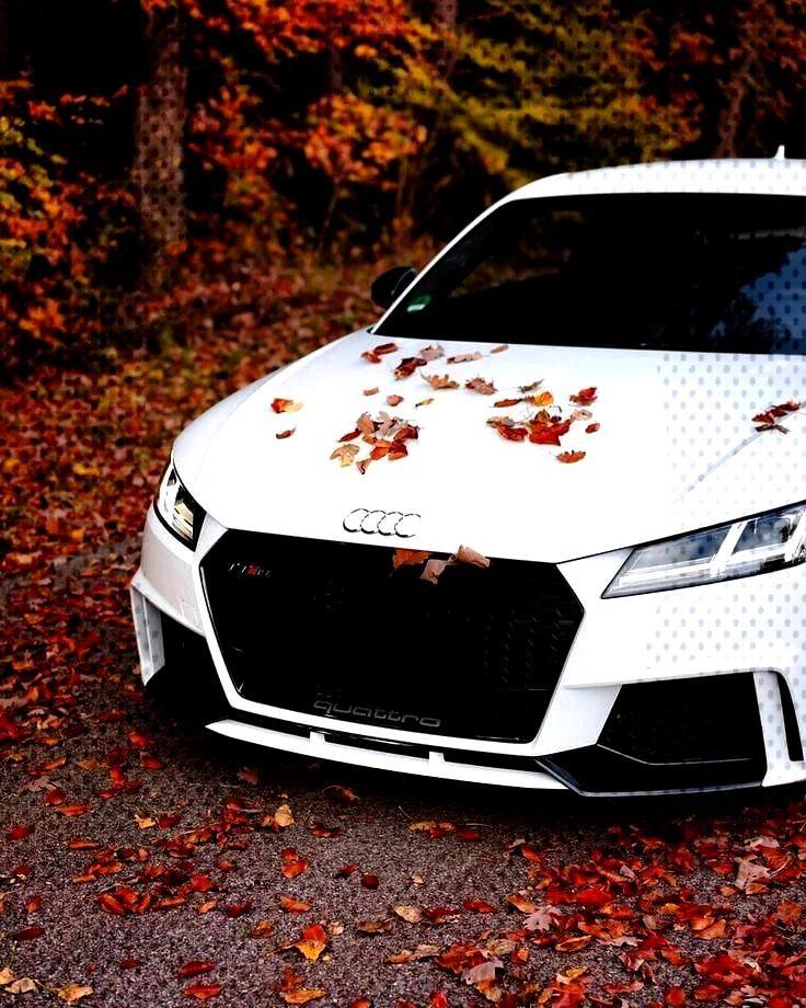 Audi Follow me for more @Pinterest:JennAudi -