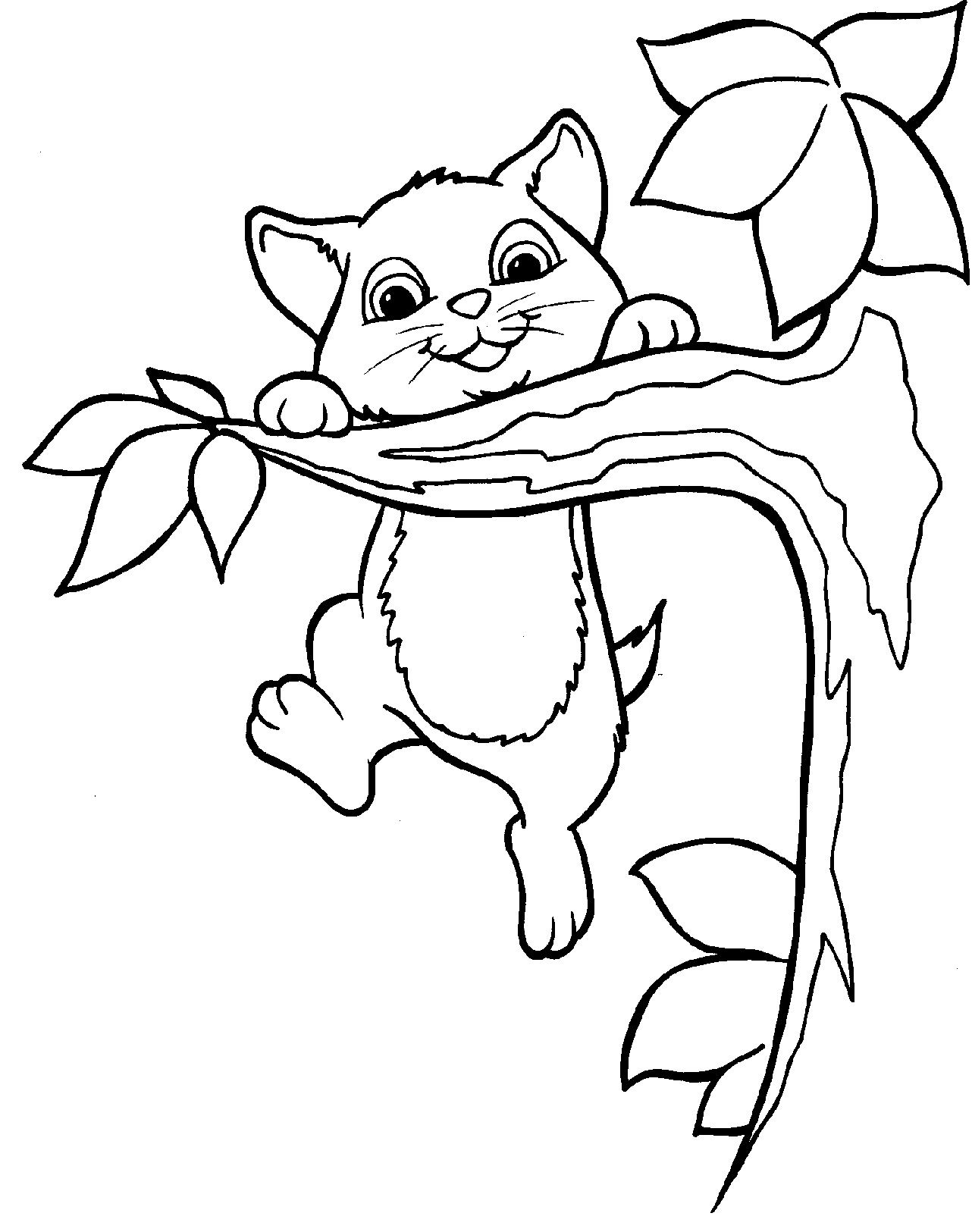 The Cat Climbed The Tree Coloring Page Cat Coloring Page Tree Coloring Page Animal Coloring Pages