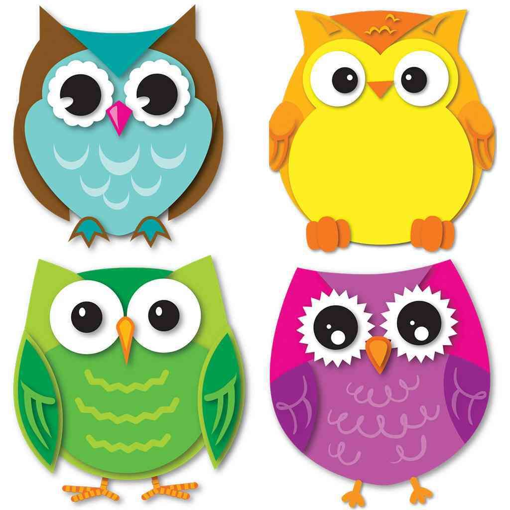 Colorful Owl Classroom Decorations : Express your contemporary sense of style by decorating