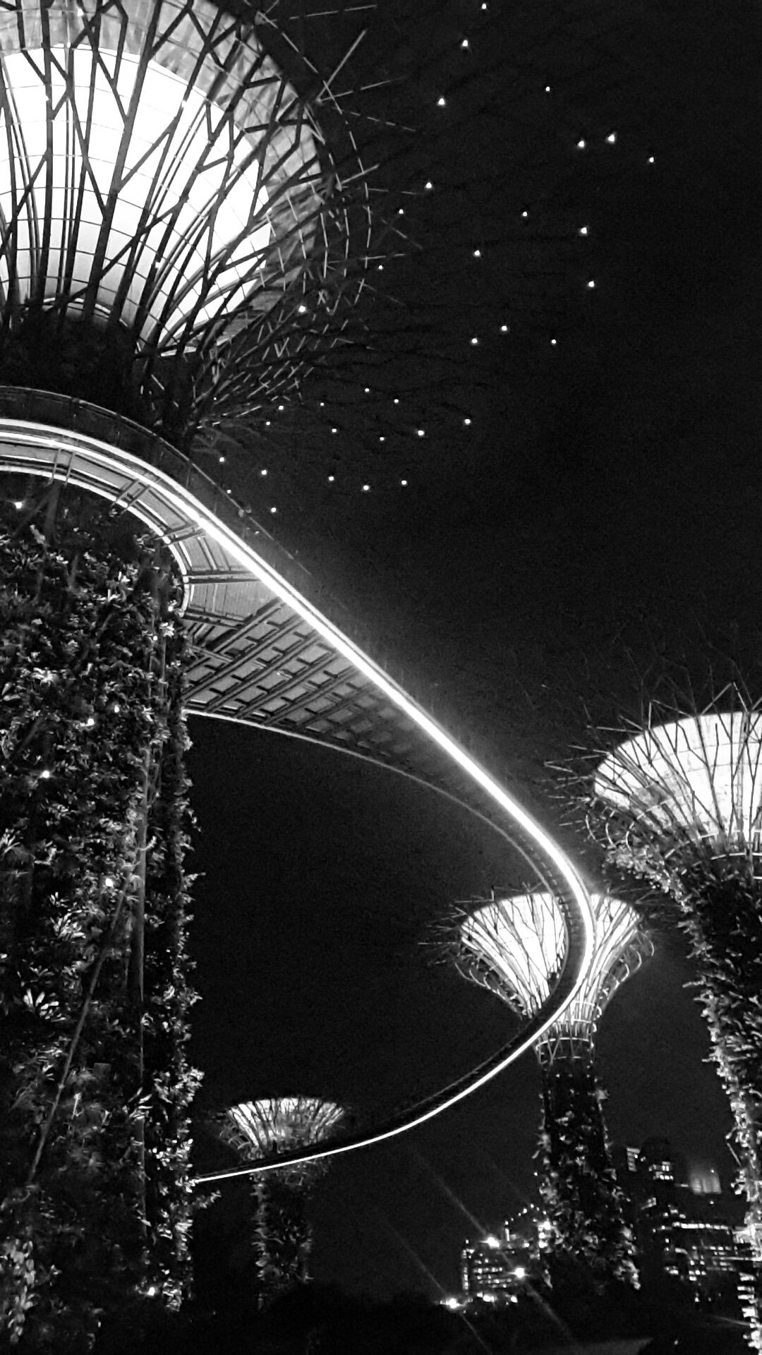 Garden by the bay singapore black white