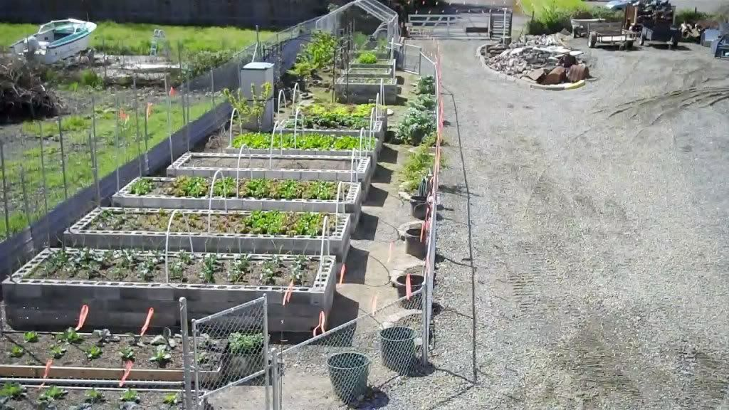 1000+ Images About Garden On Pinterest | Raised Beds, Raised Bed