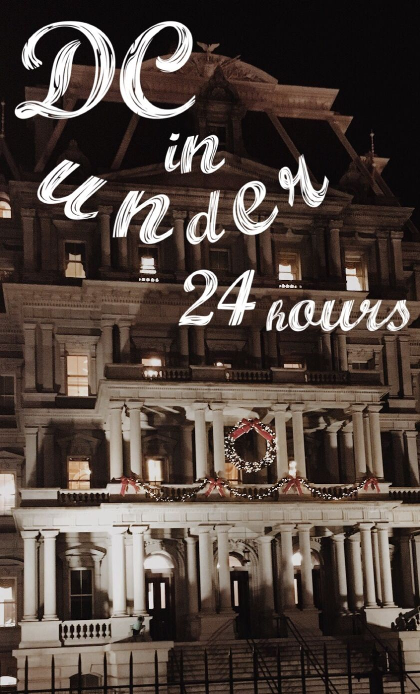 Viva la VISA DC in under 24 Hours National christmas