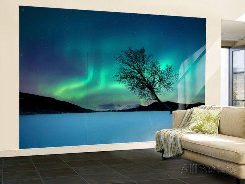 Aurora Borealis over Lake in Troms County