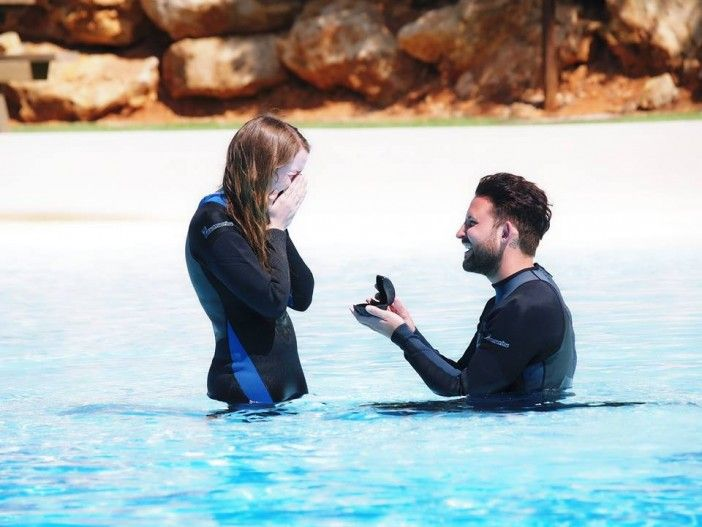 Watch This Amazing Dolphin Marriage Proposal