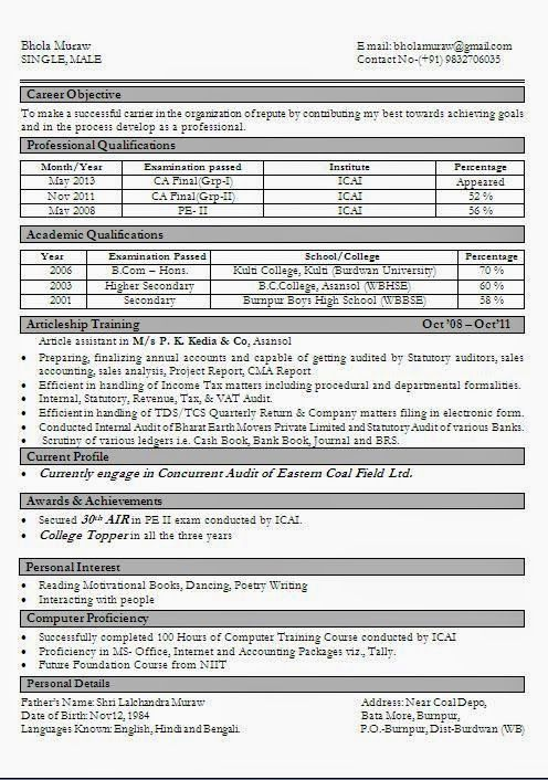 business resume examples Sample Template Example of Excellent - vita resume example