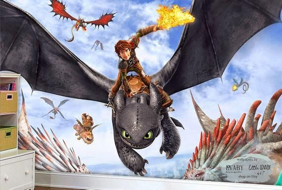 How to Train Your Dragon Wall Mural, Hiccup and Night Fury