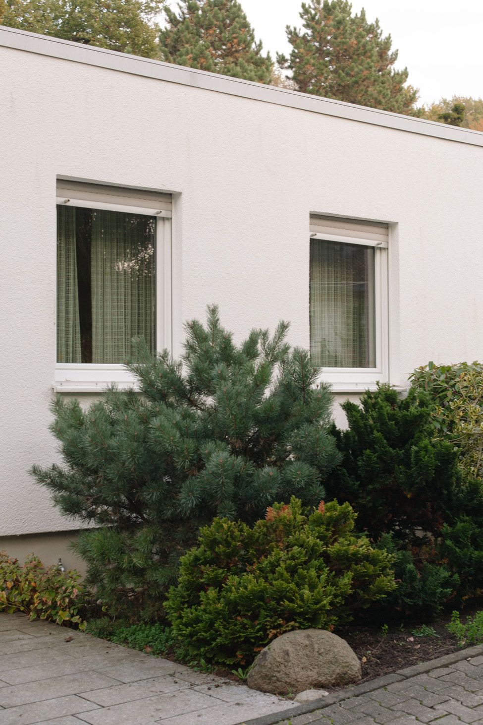 LOOKBOOK COLLECTION N°2 www.collectionno2.de  #suburb #collectionno2 #house #window #windowlooking #curtains #green #tree #bush #bushes #lynch #tannengrün #khaki #olive #secondhand #onlineshop #collection #no2 #no.2 #n°2