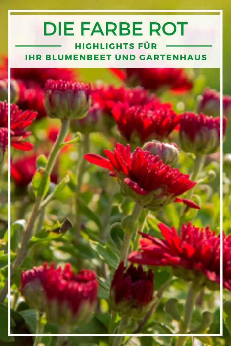Garten gestalten mit der Farbe Rot Von Beet zu Gartenhaus