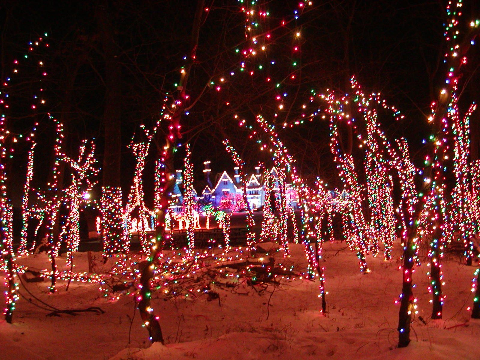 hartwood acres celebration of lights - Celebration Christmas Lights