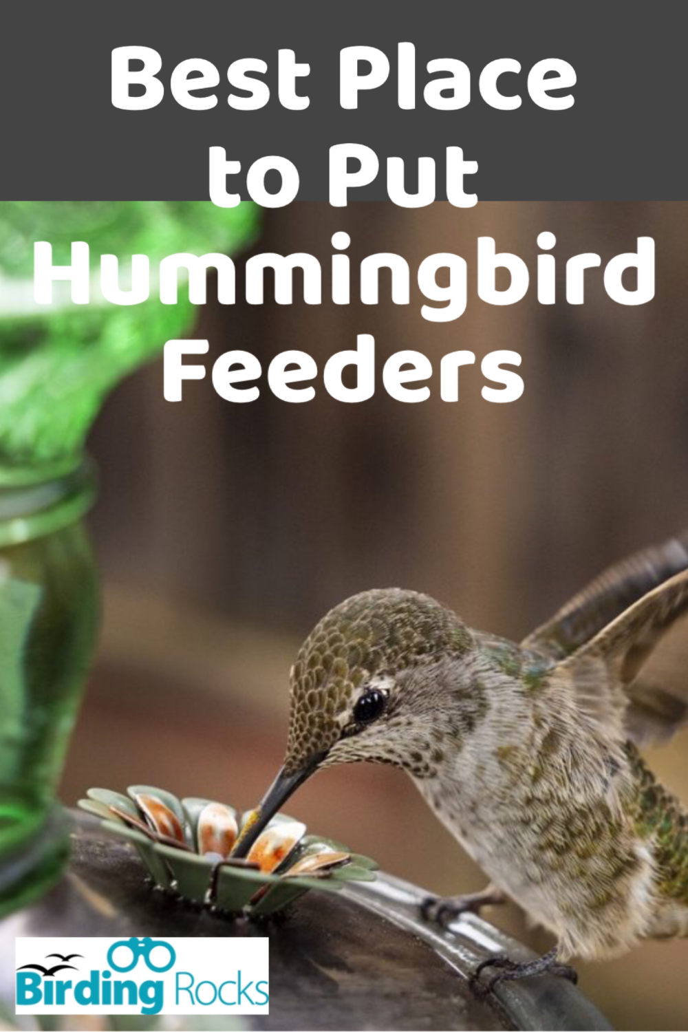 Best Place To Put Hummingbird Feeders In 2020 Humming Bird Feeders Hummingbird Sugar Water For Hummingbirds