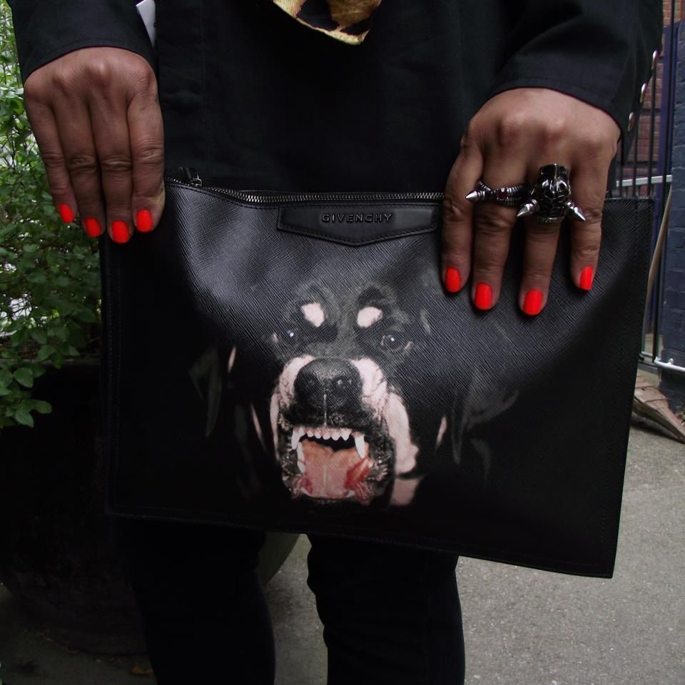 Givenchy Dog Bag Louis Vuitton Handbags My Outfit