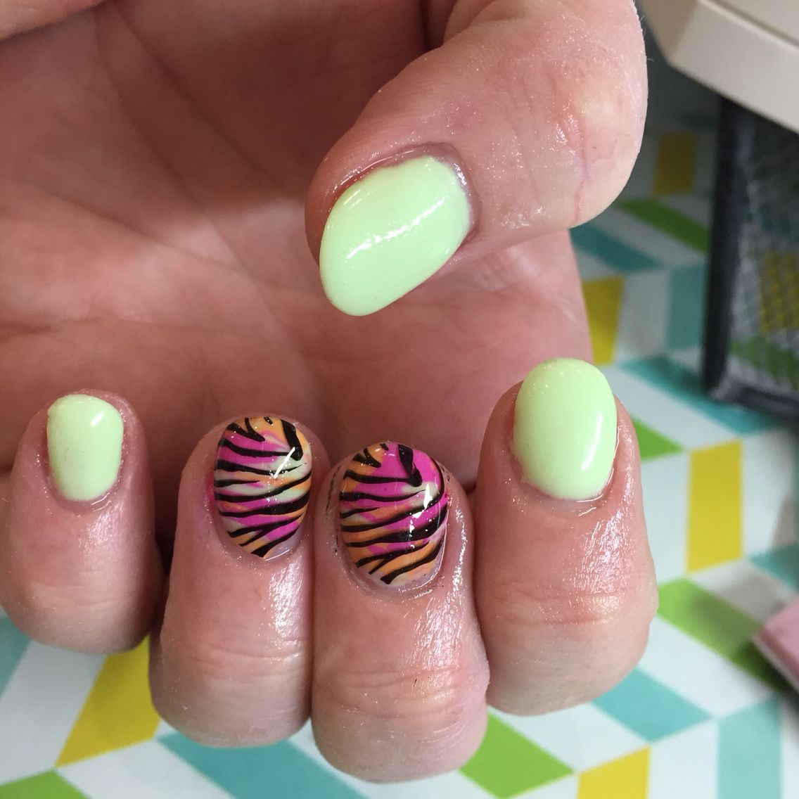 Zebra multi colored | nail designs and nail art. Stamp designs ...