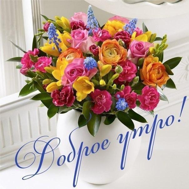 Картинки с поздравлением с добрым утром с цветами, открытка днем
