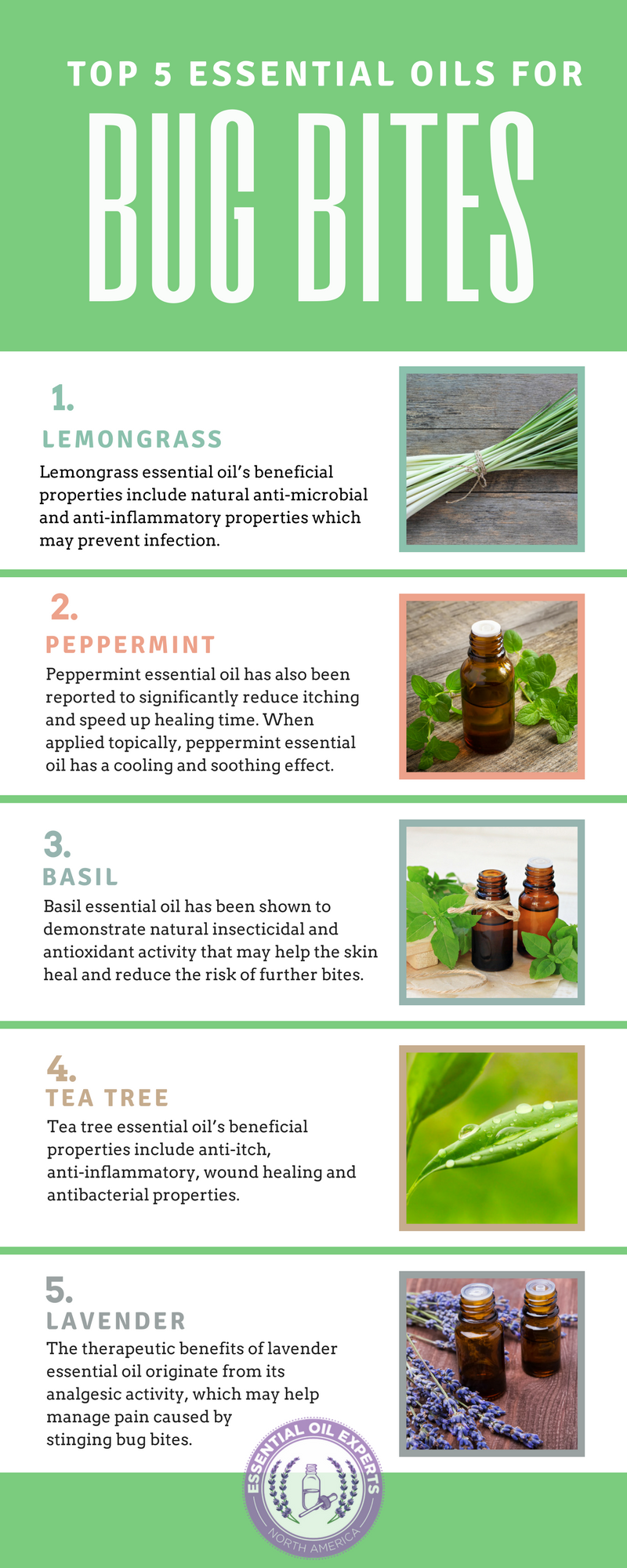 Top 5 Essential Oils For Bug Bites Mosquito Spider Tick Ant