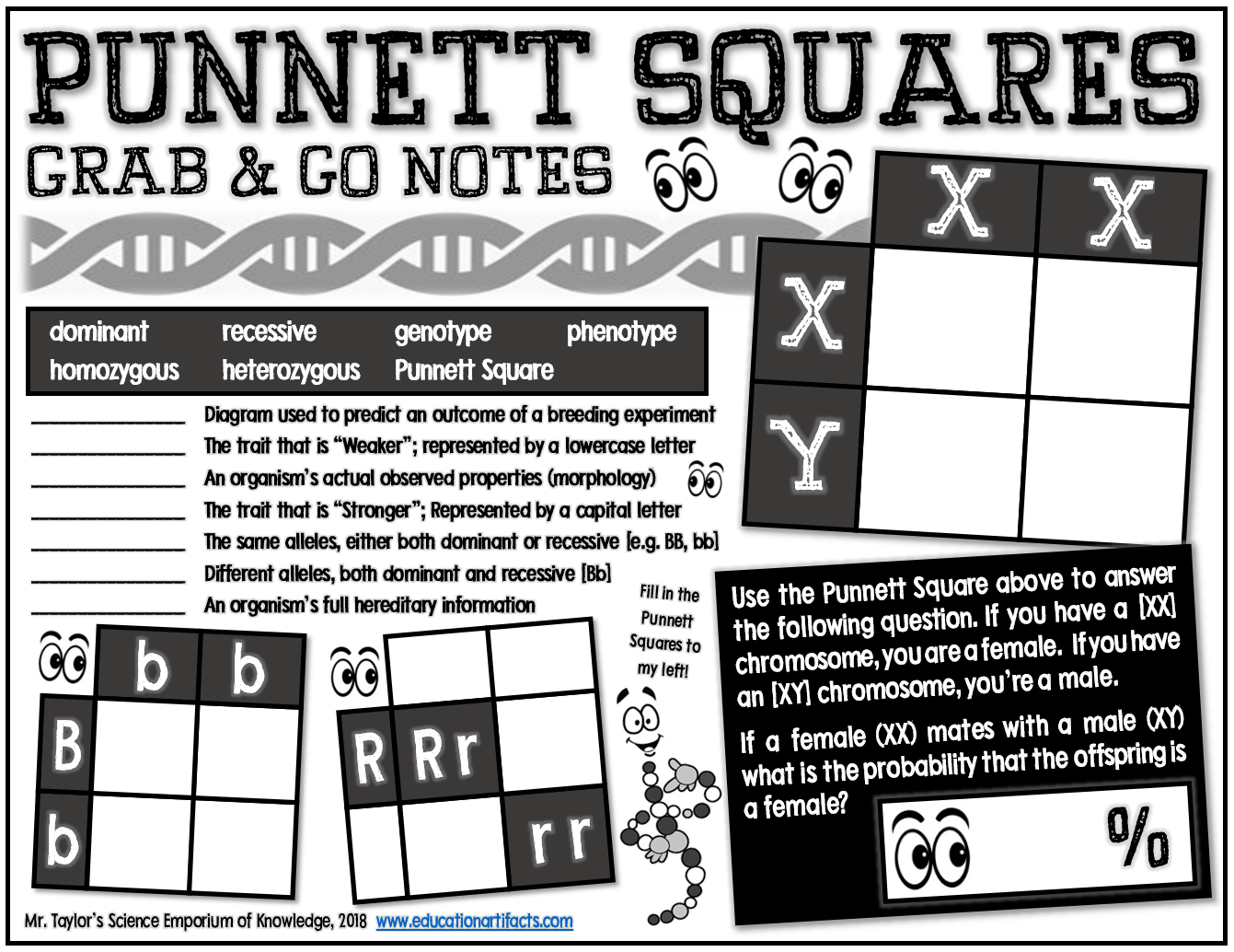 Grab And Go Notes Punnett Squares