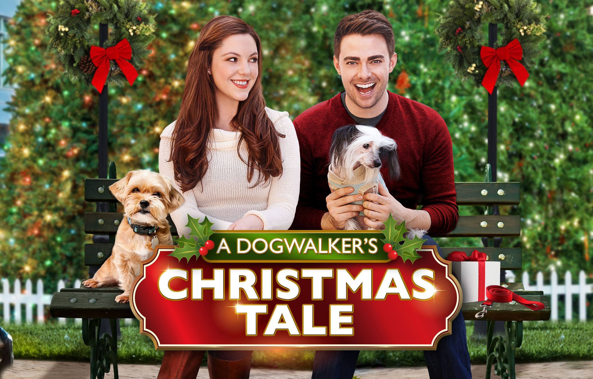 A Dogwalker S Christmas Tale Uptv Com Uplifting Entertainment Family Movies Tv Series Music Christmas Tale Family Movies Movies