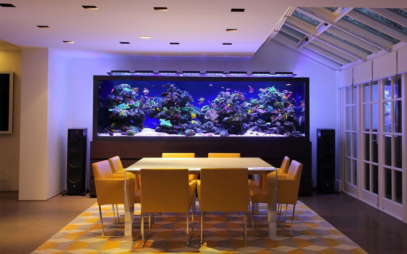Huge Home Aquarium Aquarium Architecture Aquarium Design Home