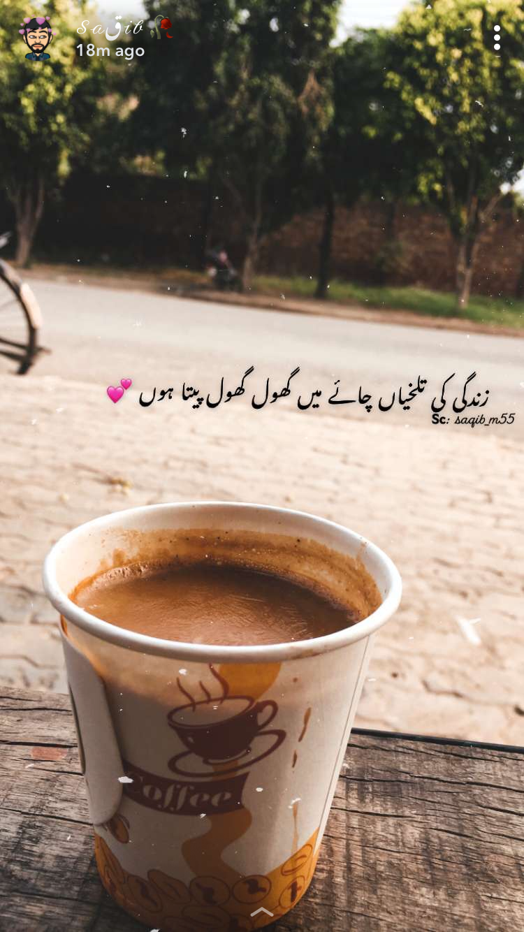 Pin By Rehab Mirza On Urdu Poetry شاعری Poetry Words Coffee Photography Urdu Quotes