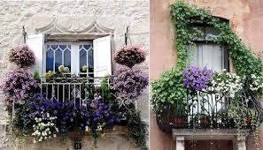 Znalezione Obrazy Dla Zapytania Balkon W Bloku Kwiaty Plants
