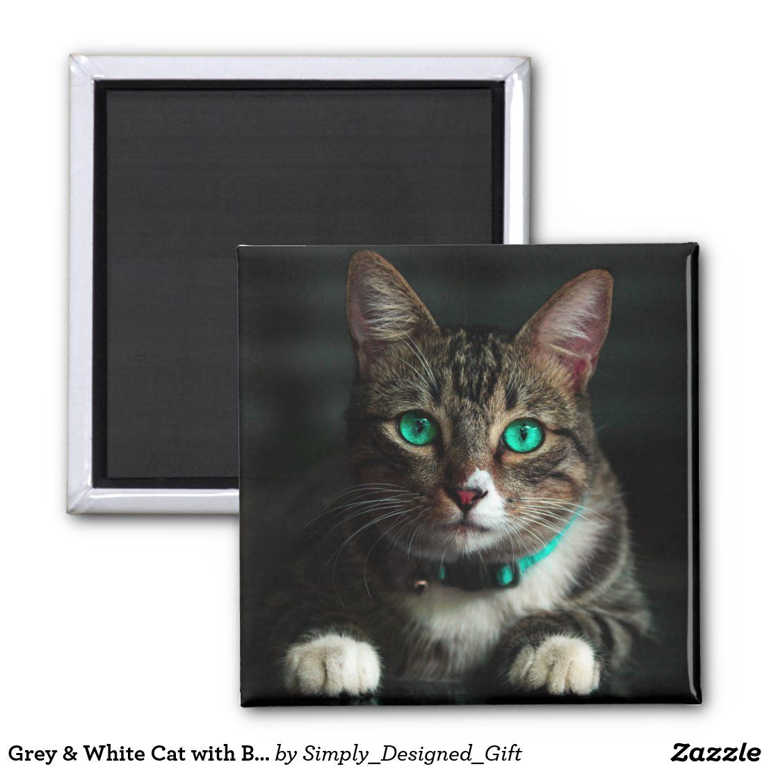 Grey White Cat With Blue Eyes Matching Collar Magnet Zazzle Com In 2020 Cat With Blue Eyes White Cat Cute Cats