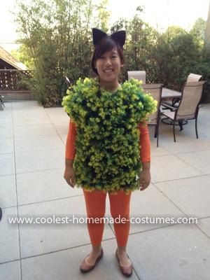 Coolest Chia Pet Costume Chia Pet Costumes Work Appropriate