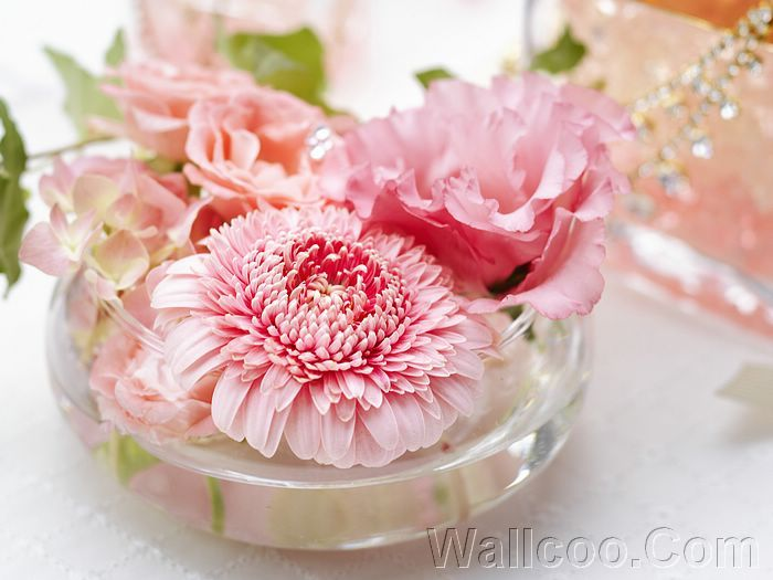 Pink floating flowers