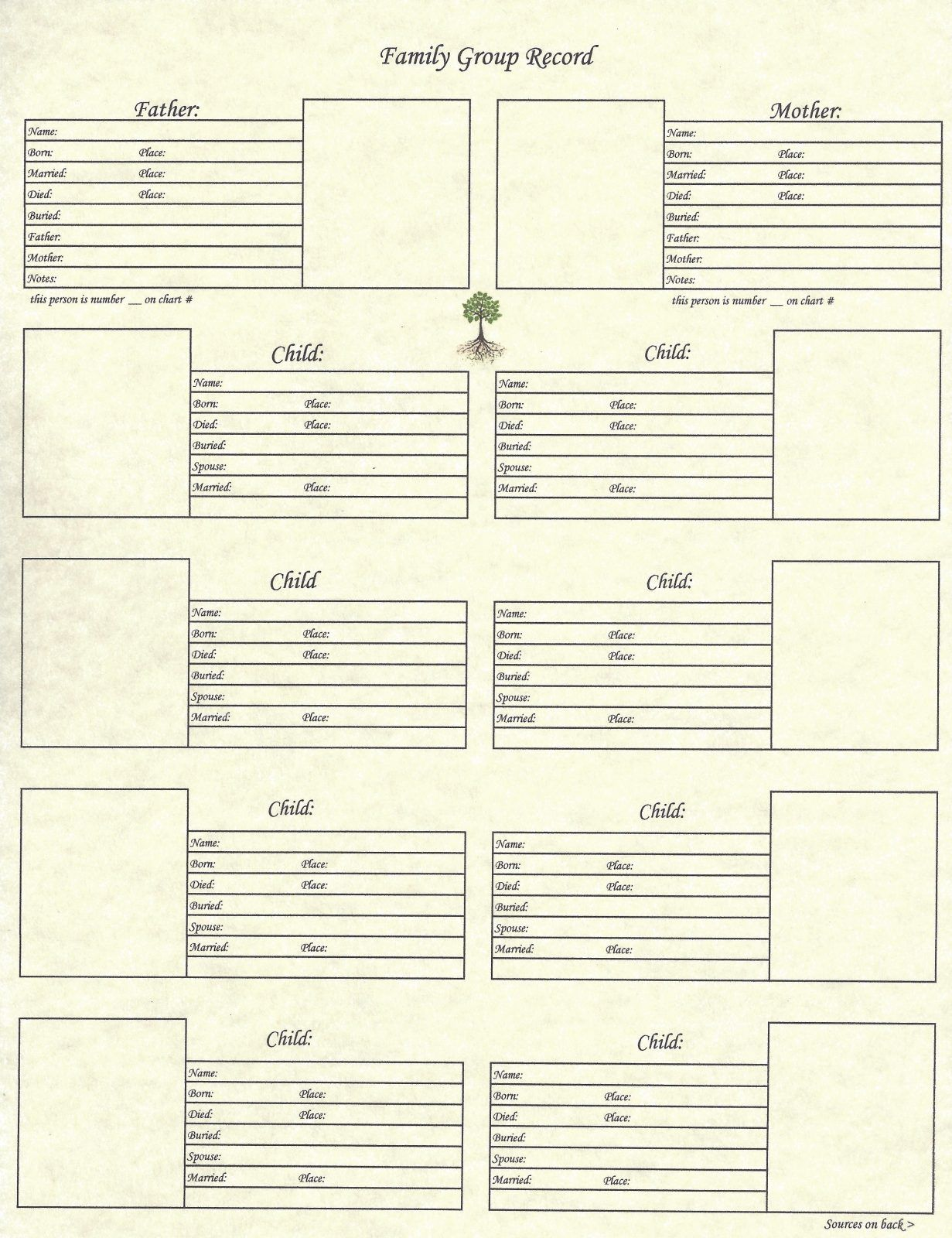 our roots 8 5 x 11 family group chart 2 genealogy