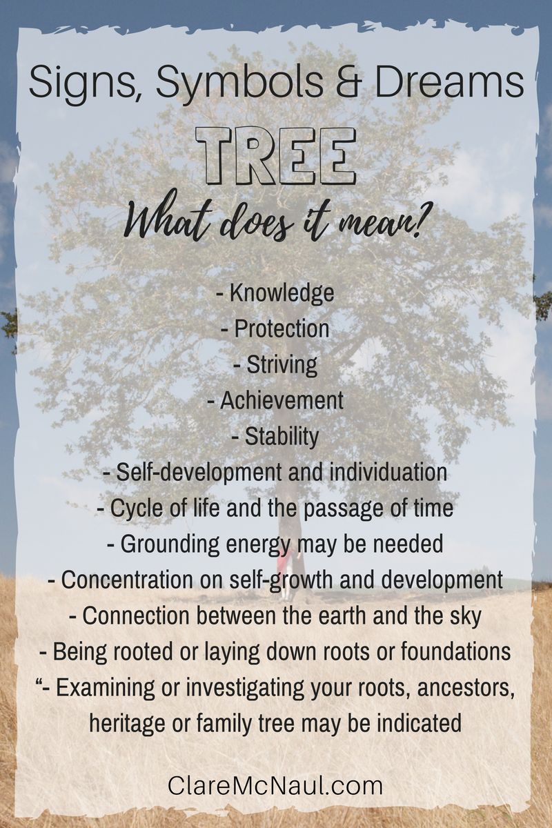 Rich With Symbolism Pay Attention When Tree Shows Up In Your Life