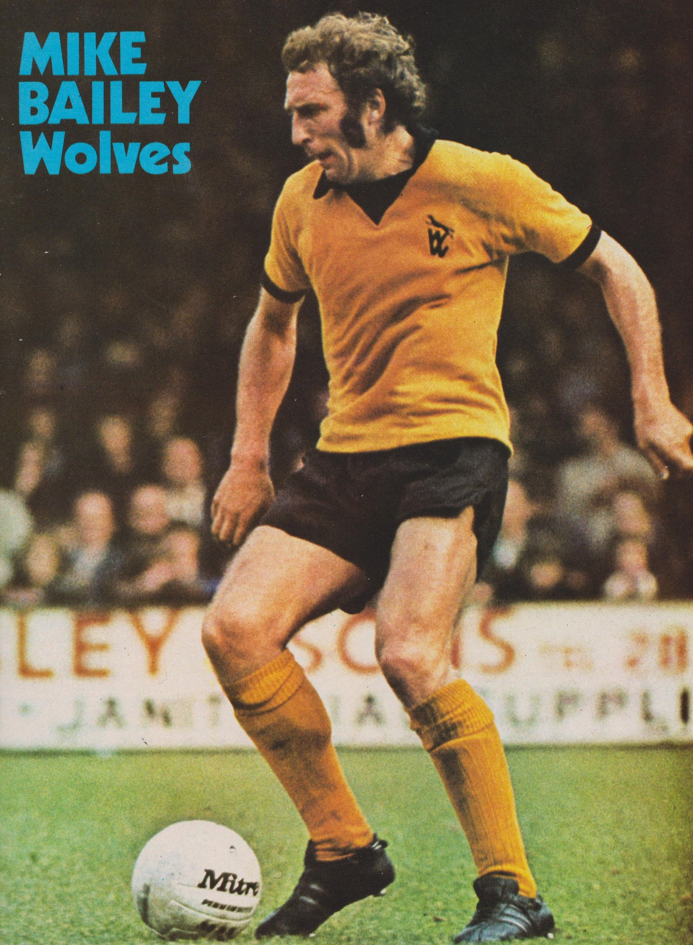 Mike Bailey Wolves 1973   Mike bailey, Wolf, Football