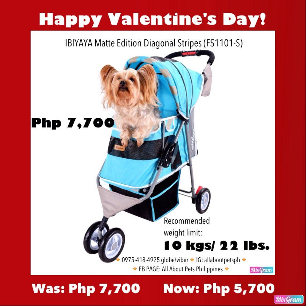 Ibiyaya Matte Edition Diagonal Stripes Pet Stroller