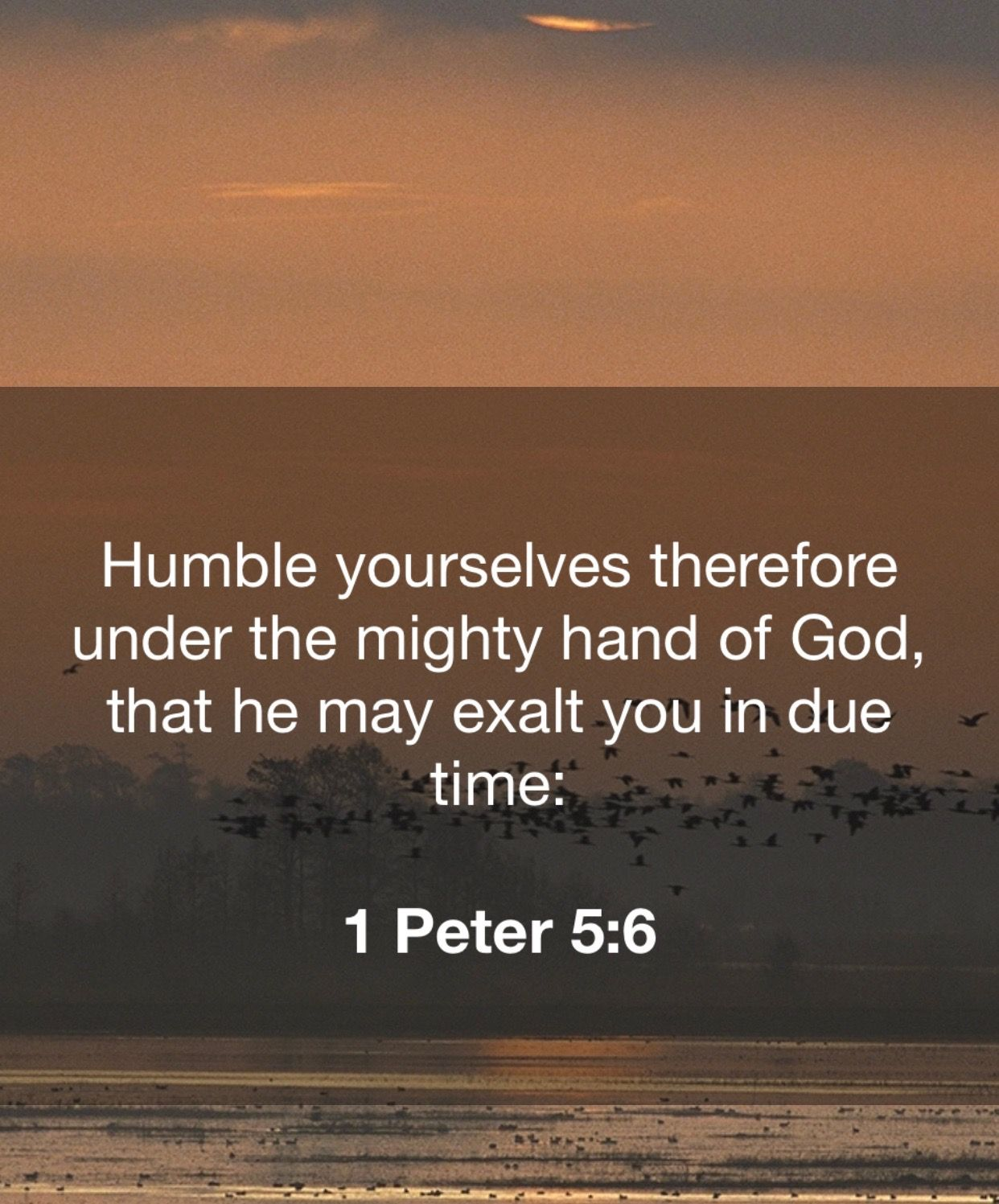 Pin by Brenda Gaskins on Bible Humble yourself, 1 peter