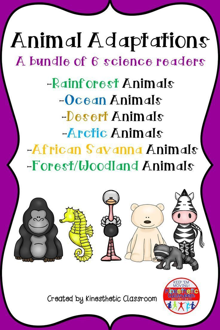 Animal Adaptations A Bundle of 6 Science Readers Animal