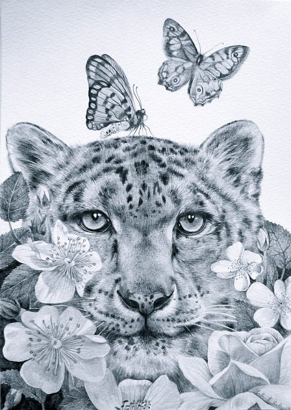 Original Drawing Snow Leopard Butterfly Flower Surreal Cat