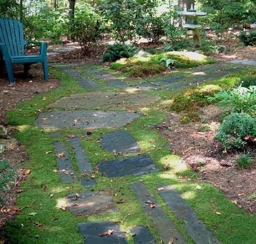 Green Idea: A Moss Yard U2014 Most Popular Posts