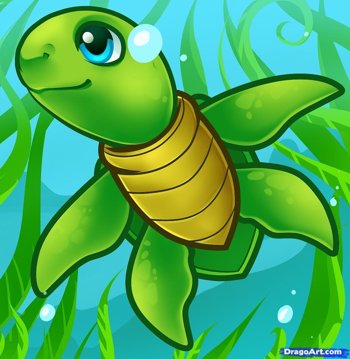 How to Draw a Sea Turtle Cartoon Sea Turtle Jillian