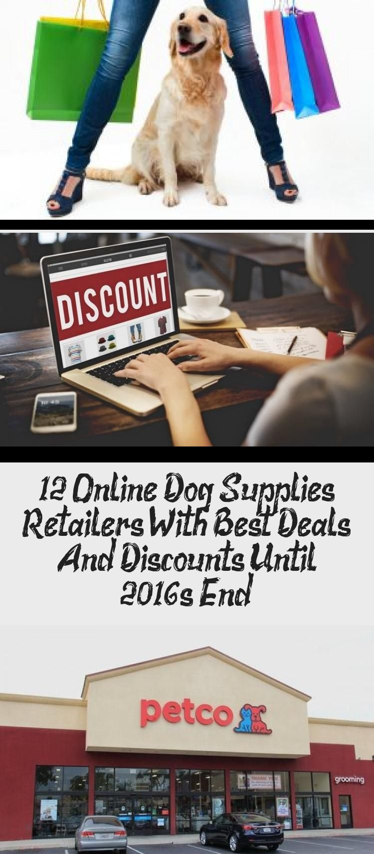 12 Online Dog Supplies Retailers With Best Deals And Discounts