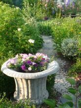 Een foto uit de tuin van Liesbetl